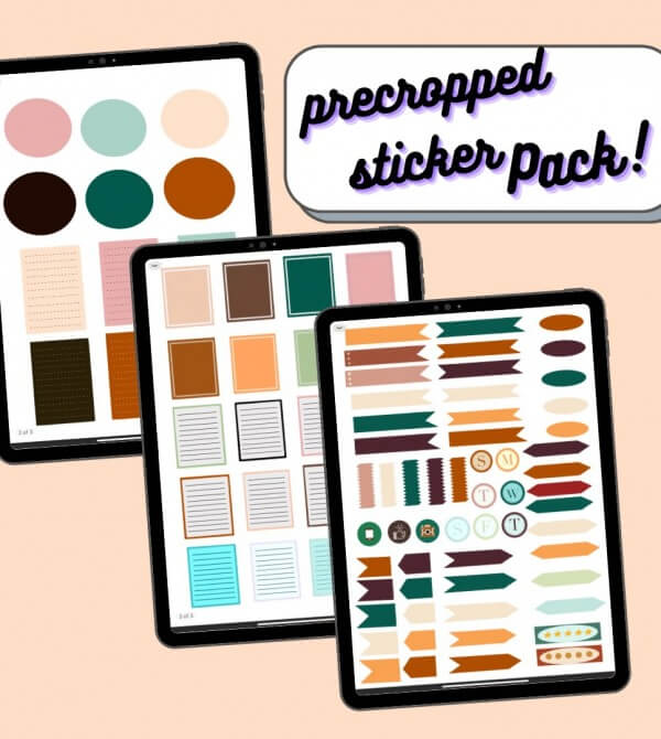 Ipad planner stickers